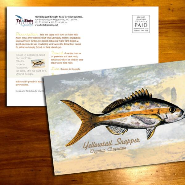 Tri-State Fish 1